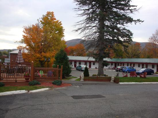 Williamstown, MA: Hotel grounds surrounded by beautiful fall colors; seating area is at left