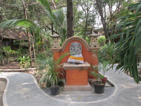 Alam Gili : Garden