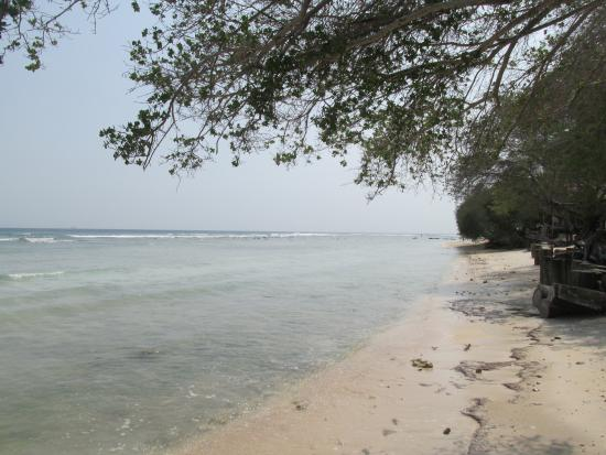 Alam Gili: Beach in the morning (high tide)