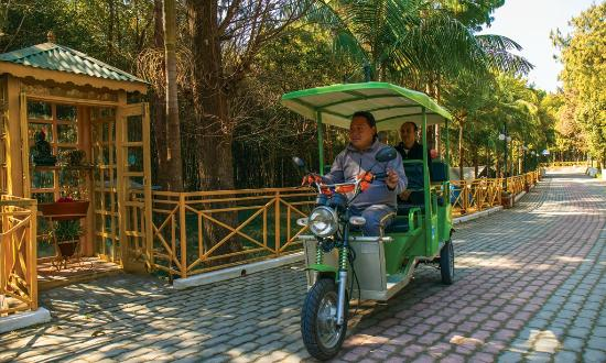 Park Village Hotel & Resort: Traverse the Road Ride a Classic Tuk-Tuk
