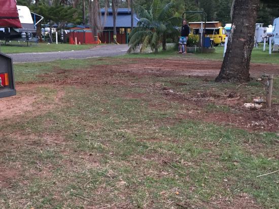 Sundowner Breakwall Tourist Park: photo0.jpg