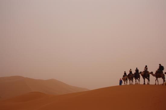 Desert Tours Morocco - Day Trips: South Oasis Tour