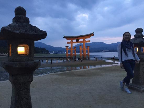 Miyajima - Picture of Miyajima, Hatsukaichi - TripAdvisor