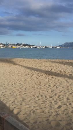 оливки - Picture of Port de Pollenca Beach, Port de Pollenca - TripAdvisor