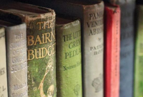 Aesop's Attic Bookshop: Books on the shelf