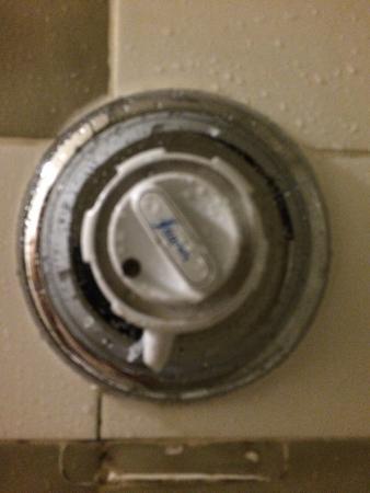 Hallam Hotel: El mando de la ducha...
