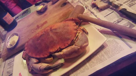 le crabe-marteau: 20151029_200749_large.jpg