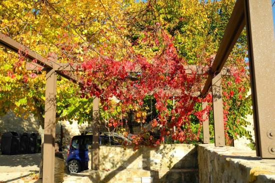 Montecastelli Pisano, Italien: esterno 2