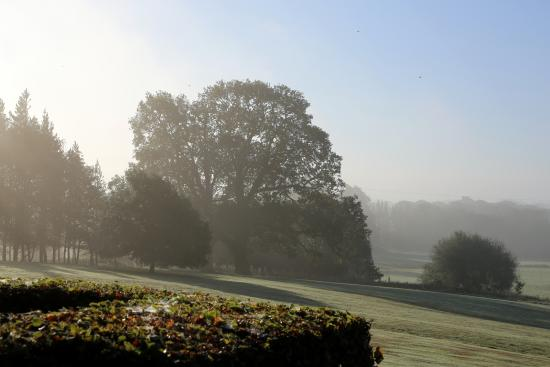 Heckfield, UK: A Spring Morning from the Car Park