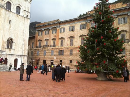 Albero Di Natale Grande.Albero Di Natale Picture Of Piazza Grande Gubbio Tripadvisor