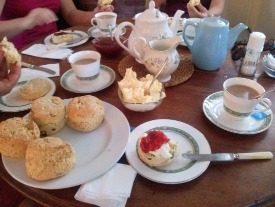 Newton Poppleford, UK: Cream tea