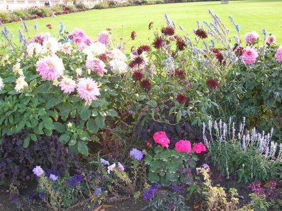 Jardin des plantes picture of jardin des plantes paris for Jardin 85 cipolletti