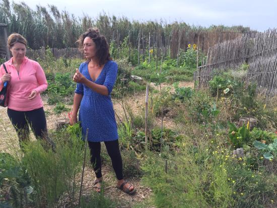 Areias do Seixo: Tanya giving us a class about edible food.