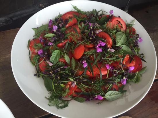 Areias do Seixo: Salad - all from the garden