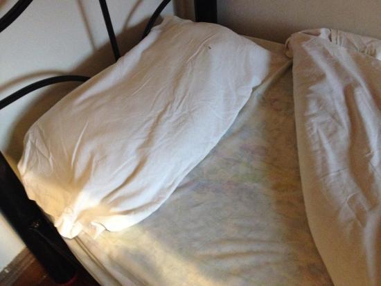 小雷科萊塔旅館照片