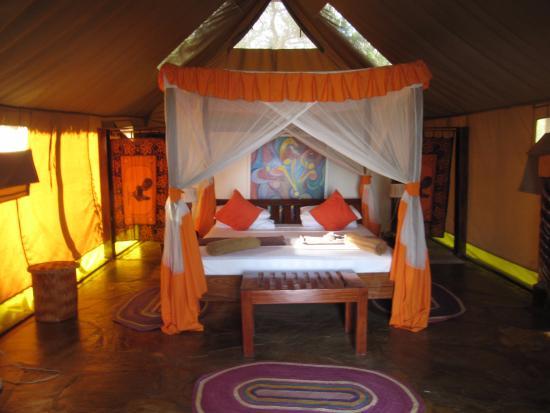 Selous Riverside Safari C& Selous Riverside Tent & Selous Riverside Tent - Picture of Selous Riverside Safari Camp ...