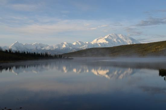 Camp Denali: photo8.jpg