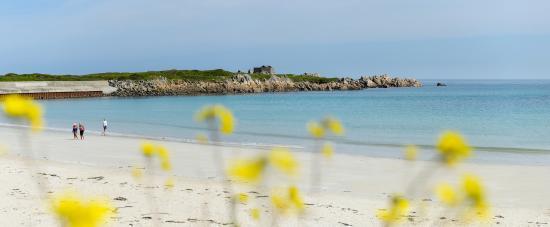 Pembroke Bay: Pembroke mid tide