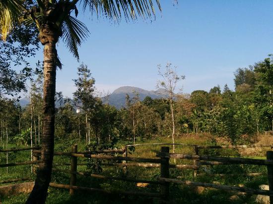 Landscape - Bynekaadu Photo