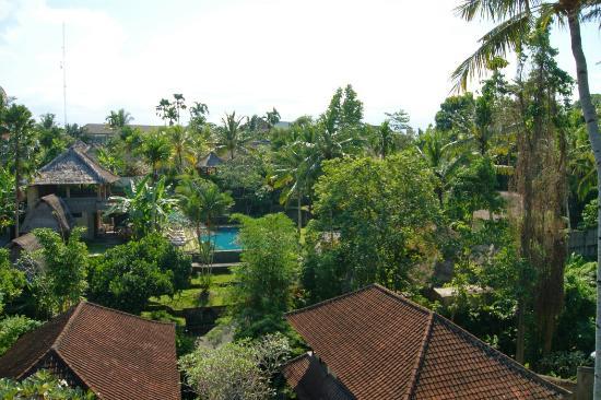 Kebun Indah: DSC07720_large.jpg