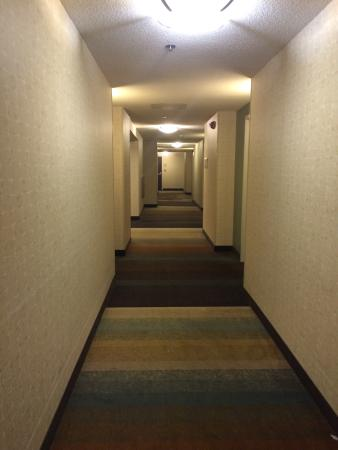 Hilton Garden Inn Mankato Downtown: 410
