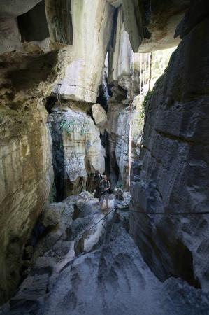 Tsingy de Bemaraha Strict Nature Reserve: Виды ошеломляющие
