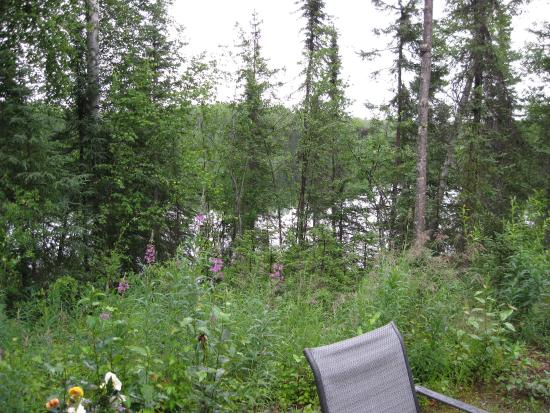 Talkeetna Lakeside Cabins: View off the deck