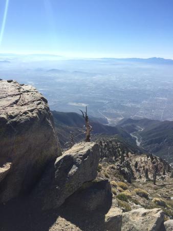 Mount Baldy, CA: Cucamonga peak---post ice house canyon trail/saddle