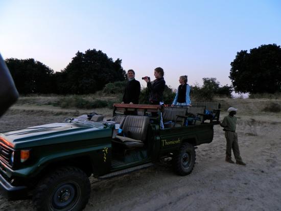 Thornicroft Lodge: Safari!