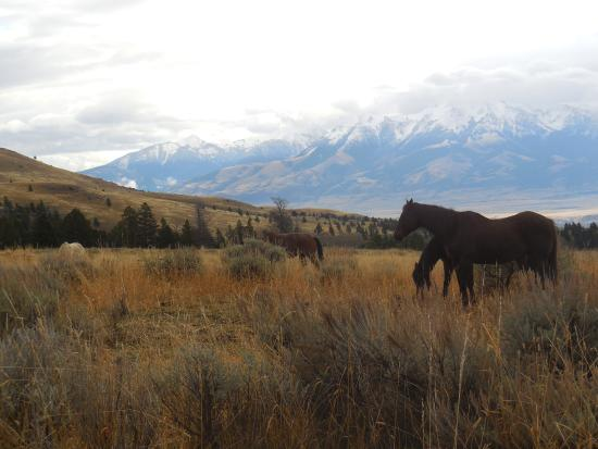 Emigrant, MT: Above the ranch.