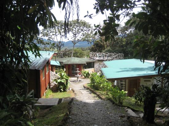Cosanga, Ecuador: Walkway to cabins, ending lounge building