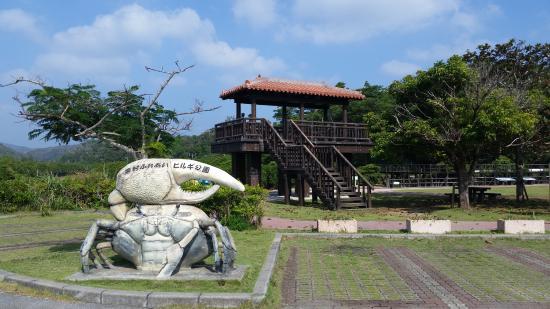 Higashi-son Fureai Hirugi Park
