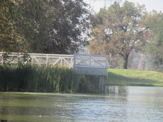 Fishing Area, Legg Lake, Whittier Narrows Recreation Area, South El Monte, Ca