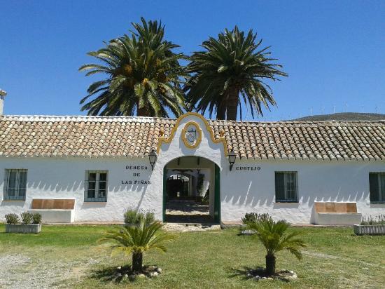 Cortijo Las Piñas: Fachada patio antiguo
