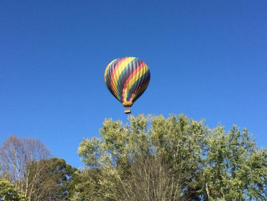 Candler, NC: Chatted ballon rides close by