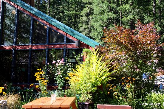Skyway Bar and Grill: Outdoor seating; near forest