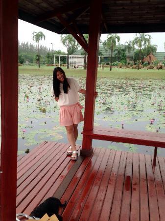 Sakon Nakhon, Thailand: 1446250859348_large.jpg