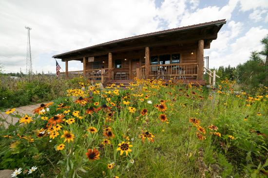 Island Park, ID: Wildflowers outside Boondocks Restaurant in early Sep.