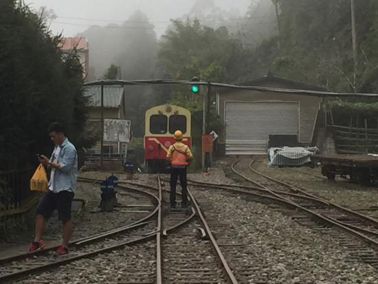 阿里山森林鉄路奮起湖駅の標識 -...