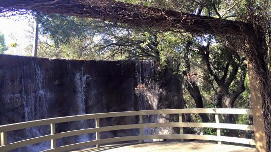 Calamigos Guest Ranch: waterfall