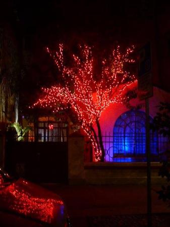 The Red Tree House: Red Tree