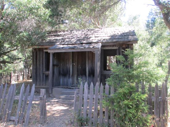 Picture of pfeiffer big sur state park big for Big sur national park cabins