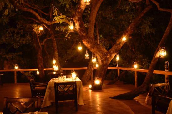 Londolozi Tree Camp: Romantic setting