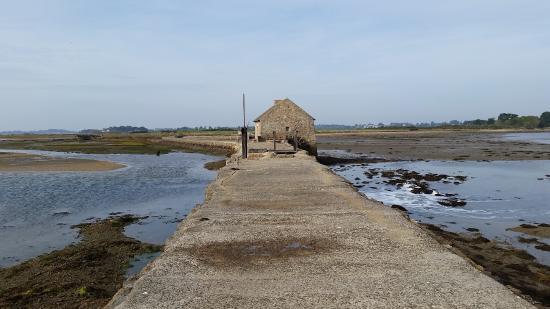 Ile-d'Arz, Frankrig: à proximité le moulin