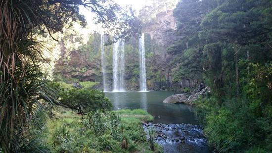 Whangarei, Nueva Zelanda: DSC_0980_large.jpg