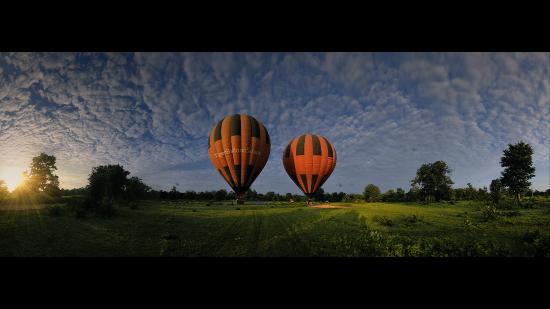 Tiger Balloon Safaris
