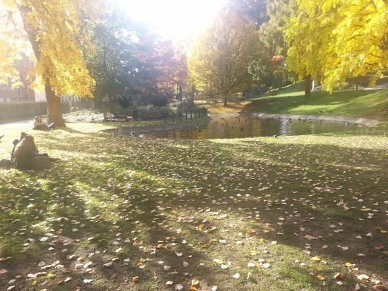 Sint-Donatuspark