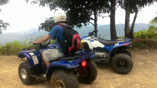 Quadrophenia Samui ATV Mountain Tours