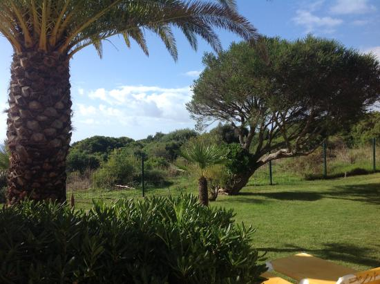 Hotel Baia Cristal: View from our terrace