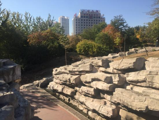 People Park of Qinhuangdao : any rocks in the park...
